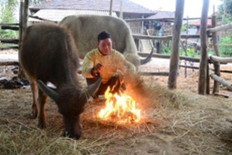 Cac tinh tu Da Nang den Khanh Hoa co mua vua, mua to - Anh 1