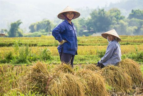 Tien Giang: Them mot xa ve dich nong thon moi - Anh 1