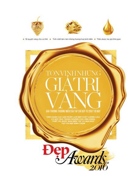 Dep Awards 2016 – Ton vinh nhung gia tri dang cap - Anh 1