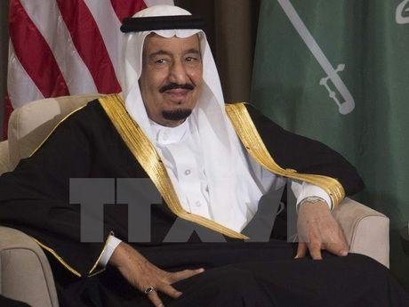 Saudi Arabia trien khai du an cong nghiep tri gia 92 trieu USD - Anh 1