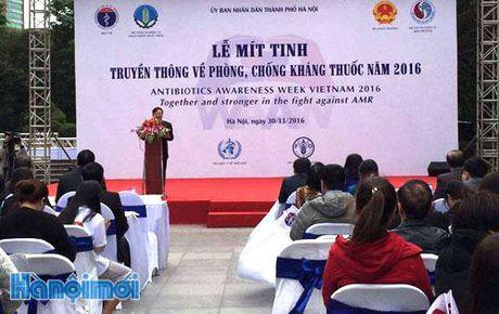 Mit tinh phong chong khang thuoc tai Viet Nam - Anh 1