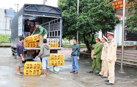 Quang Ninh: No luc phong, chong buon lau, gian lan thuong mai, hang gia - Anh 2