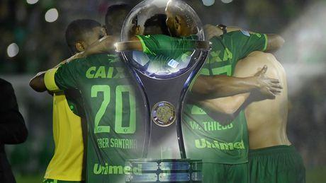 Atletico Nacional huy chung ket, nhuong ngoi vo dich cho Chapecoense - Anh 1