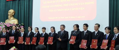 TP.HCM: Bo nhiem chanh van phong 24 toa quan, huyen - Anh 1