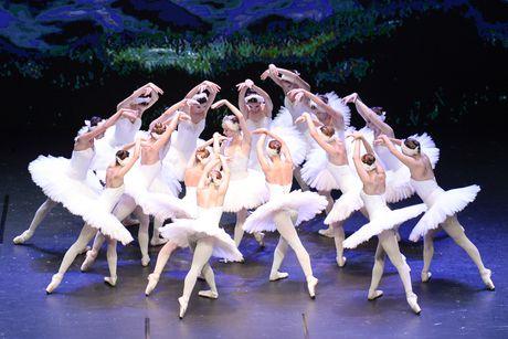 Cong dien hai vo ballet kinh dien Nga o Viet Nam - Anh 3