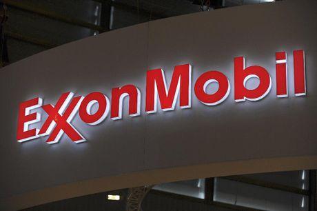 Pho Thu tuong Trinh Dinh Dung tiep lanh dao Tap doan ExxonMobil - Anh 1