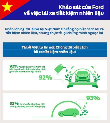 Da so lai xe Viet 'ngo nhan' ve tiet kiem nhien lieu - Anh 1