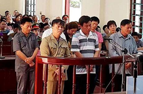 Tuyen an 8 bi cao vu 'nuot dat' Trang trai Dong Tam tai Vinh Phuc - Anh 1