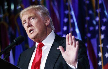 Tong thong dac cu Donald Trump tuyen bo tu bo cong viec kinh doanh - Anh 1