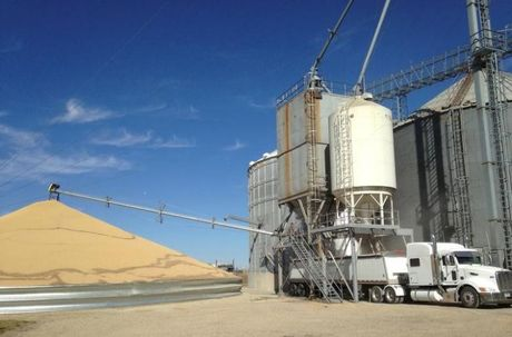 USDA: Tieu thu dau tuong trong thang Muoi tang 25,7% so voi thang 9 - Anh 1