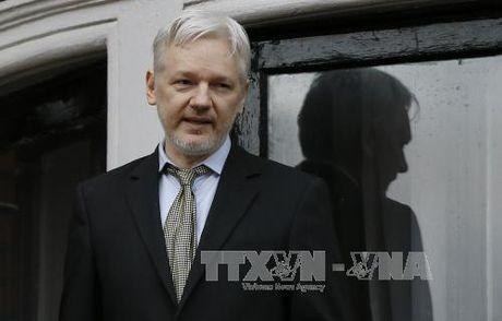 """Cha de"" Wikileaks co the doi Anh, Thuy Dien boi thuong - Anh 1"