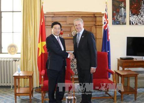 Pho Thu tuong Pham Binh Minh tham chinh thuc New Zealand - Anh 1
