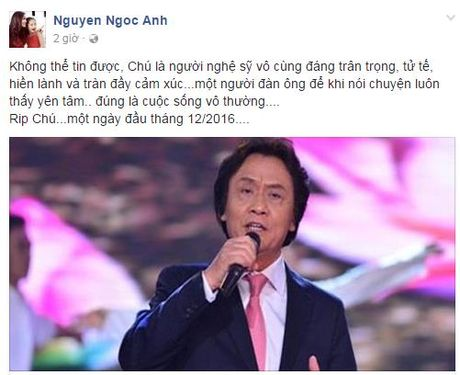 Nghe si Viet tiec thuong truoc su ra di cua NSUT Quang Ly - Anh 3