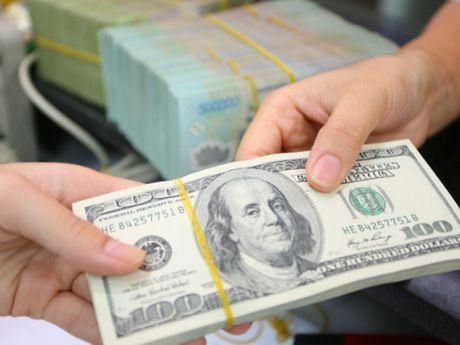 USD va dien bien tien dong - Anh 1