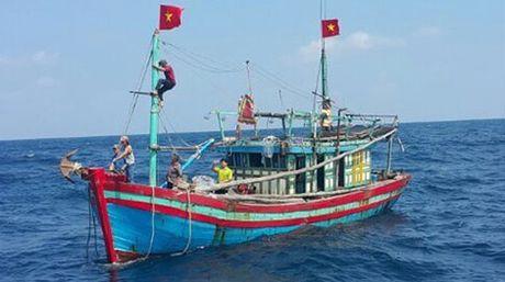 Tau Quan chung Hai quan cuu 11 ngu dan bi nan tren vung bien Hoang Sa - Anh 1