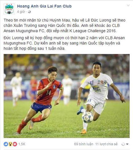 Fan HAGL bat ngo khi Duc Luong sap gia nhap CLB Han Quoc - Anh 1
