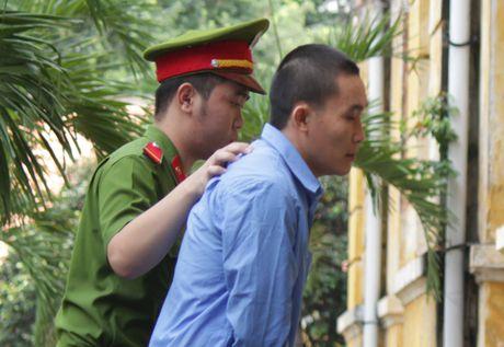 'Che' o to thanh xe cuu thuong cho dong vat hoang da - Anh 1