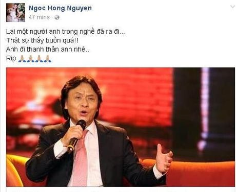 Gioi nghe si Viet tiec thuong truoc su ra di cua NSUT Quang Ly - Anh 4