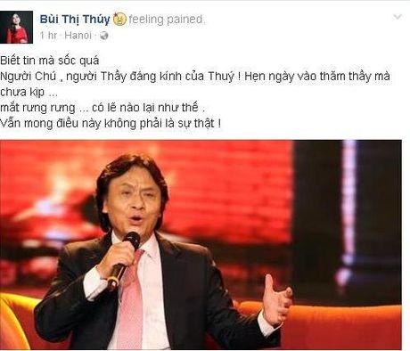 Gioi nghe si Viet tiec thuong truoc su ra di cua NSUT Quang Ly - Anh 5
