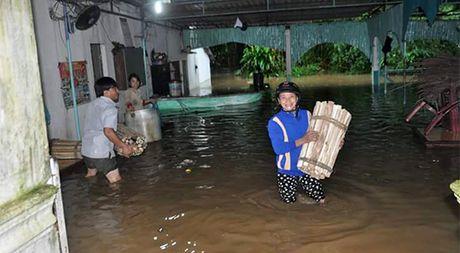 Quang Ngai va Binh Dinh ngap nang, 1 nguoi mat tich do mua lu - Anh 3