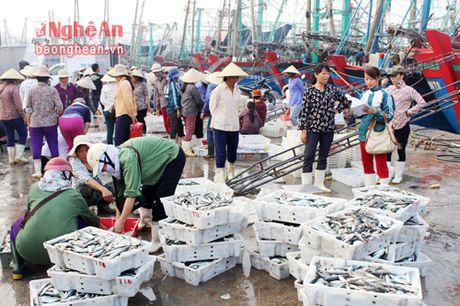 'Tau 67' o Nghe An dat doanh thu tren 1 ty dong/chuyen bien - Anh 1