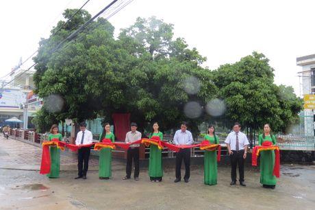 3 cay co thu o Quang Ngai duoc cong nhan Cay di san Viet Nam - Anh 1