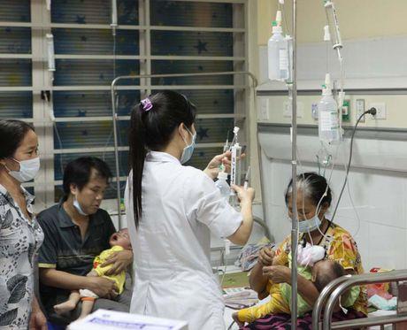 Bao dong vi khuan da khang thuoc tai Viet Nam - Anh 1