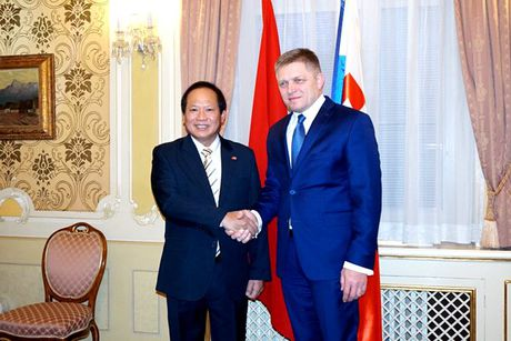 CNTT Viet Nam vao chau Au qua canh cua Slovakia - Anh 1
