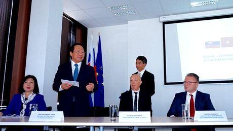 CNTT Viet Nam vao chau Au qua canh cua Slovakia - Anh 2
