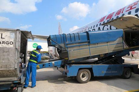 Dau tu 3 trung tam logistics hang khong - Anh 1