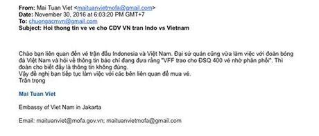 CDV Viet Nam hoang mang vi ve tai Indonesia - Anh 2