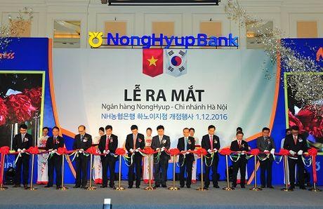 Ra mat chi nhanh ngan hang Nonghyup Ha Noi - Anh 1