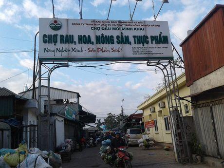 Muc so thi 'ga khong dau, khong chan' o cho dau moi Ha Noi - Anh 1
