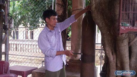 Hieu qua bat ngo tu mot mo hinh khuyen hoc tai Quang Tri - Anh 1