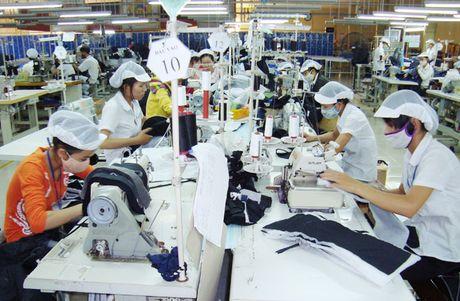 'Nganh huong loi so 1' se ra sao khi khong co TPP? - Anh 1