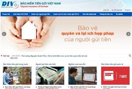 Danh gia muc do bao toan von tai Bao hiem tien gui Viet Nam hang nam - Anh 1