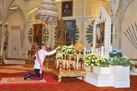Nhieu quoc gia gui loi chuc mung Tan vuong Thai Lan - Anh 2
