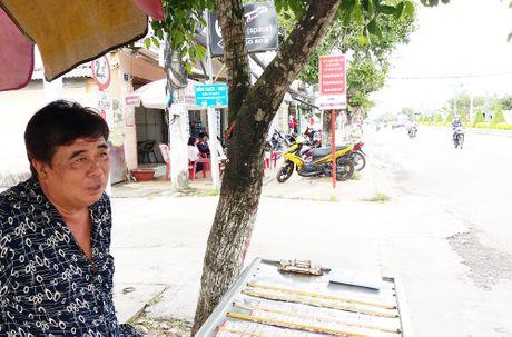 Dan Soc Trang tiec nuoi hang tram cay xanh bi cua lam cui - Anh 2