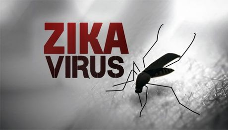 TP.HCM: Ty le thai phu nhiem virus Zika kha thap - Anh 1