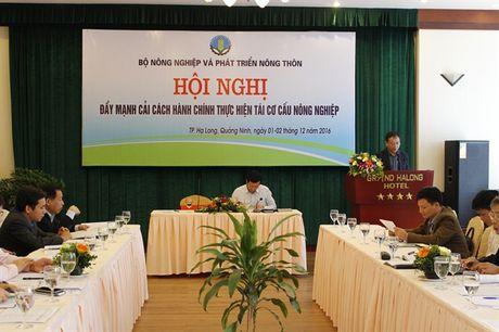 Hoi nghi day manh cai cach hanh chinh thuc hien tai co cau nong nghiep - Anh 1