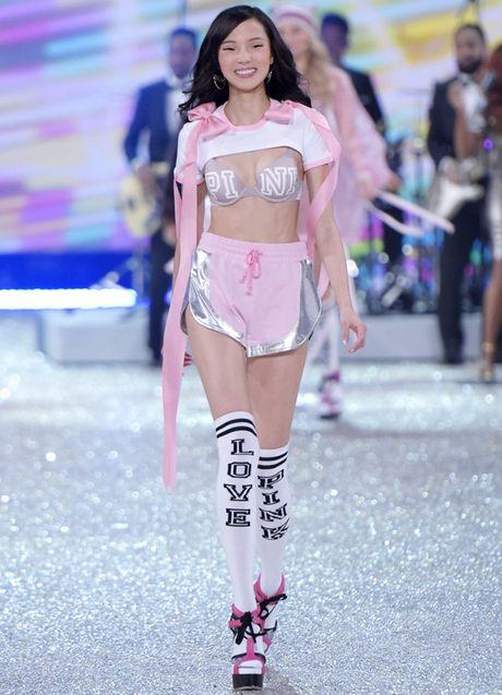 Nhung man trinh dien 'thang hoa' trong Victoria's Secret Fashion Show 2016 - Anh 26
