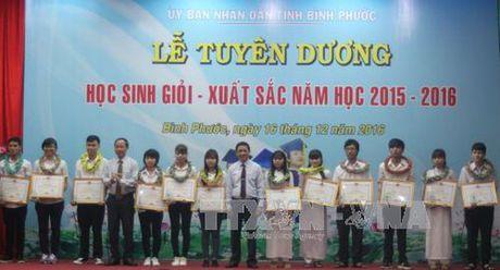 Binh Phuoc: Tuyen duong 132 hoc sinh gioi xuat sac - Anh 1
