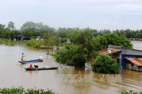 Canh bao lu tu Binh Dinh den Ninh Thuan co kha nang len lai - Anh 1