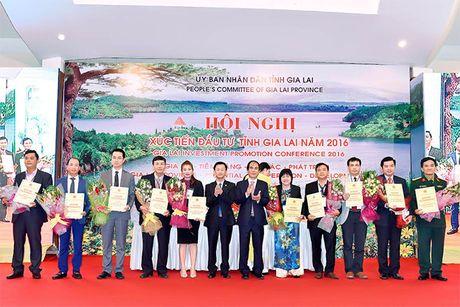 Thu tuong du Hoi nghi xuc tien dau tu tai Gia Lai - Anh 2