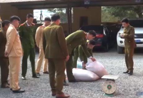 Bat xe khach van chuyen nhieu noi tang dong vat dang phan huy - Anh 1