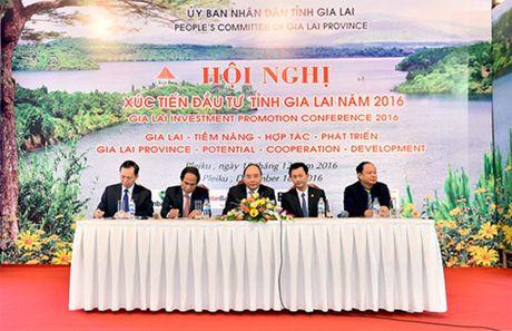 Thu tuong: Chinh quyen Gia Lai phai 'ba cung' voi nha dau tu - Anh 2