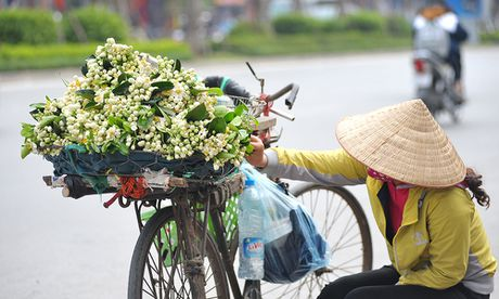Duong pho Ha Noi ngat huong hoa buoi - Anh 6