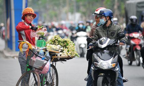Duong pho Ha Noi ngat huong hoa buoi - Anh 8