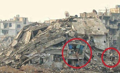 Chien su Syria: Phuc kich 'chon song' nhom phien quan Al-Qaeda o ngoai vi Damascus - Anh 3