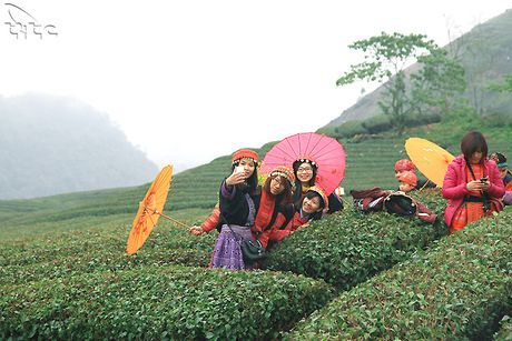 An tuong cac diem du lich Moc Chau - Anh 4